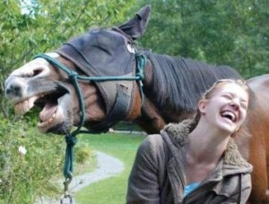 Horse & woman laughing hysterically