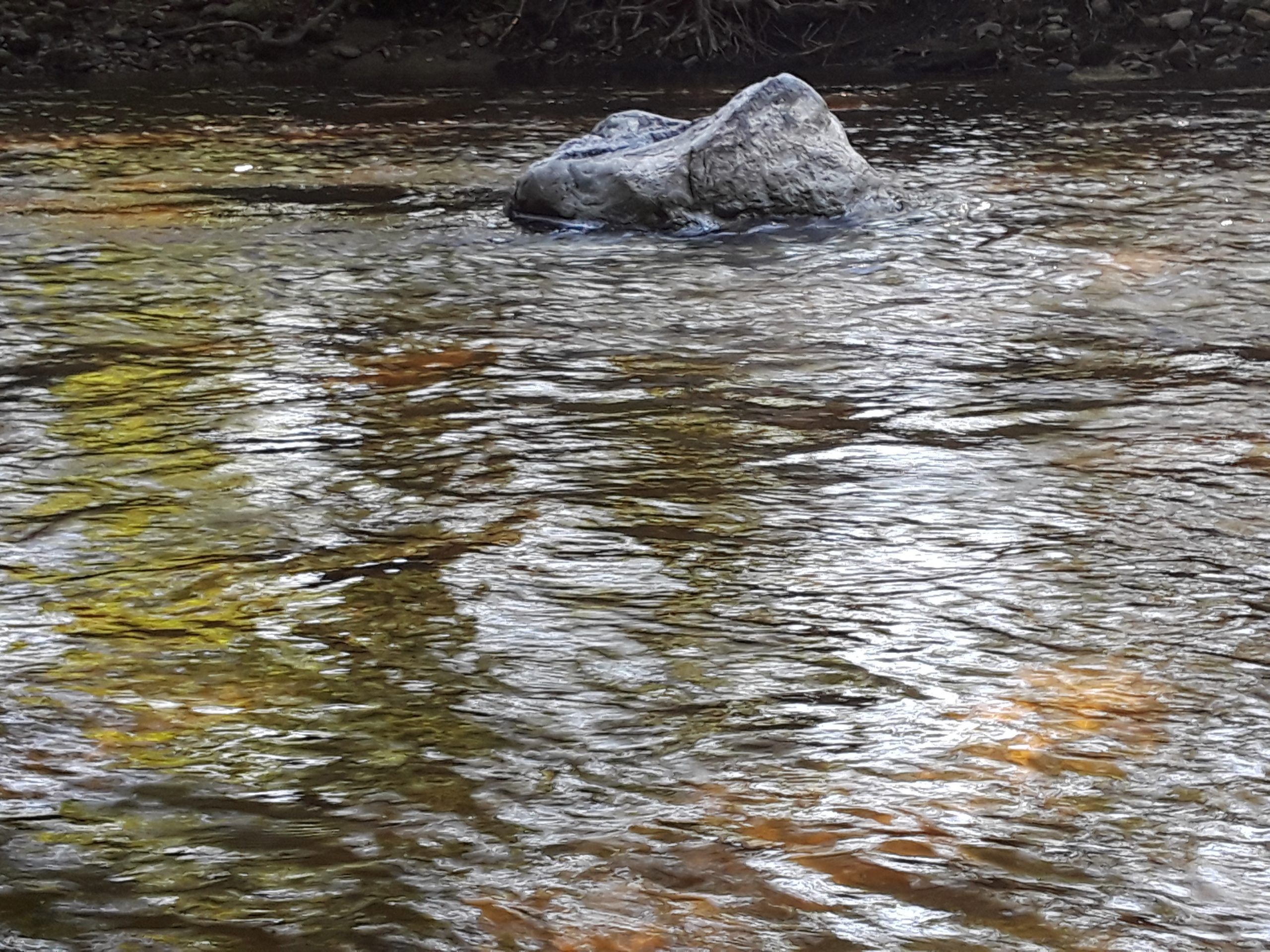 Seat-shaped rock in a shallow stream.